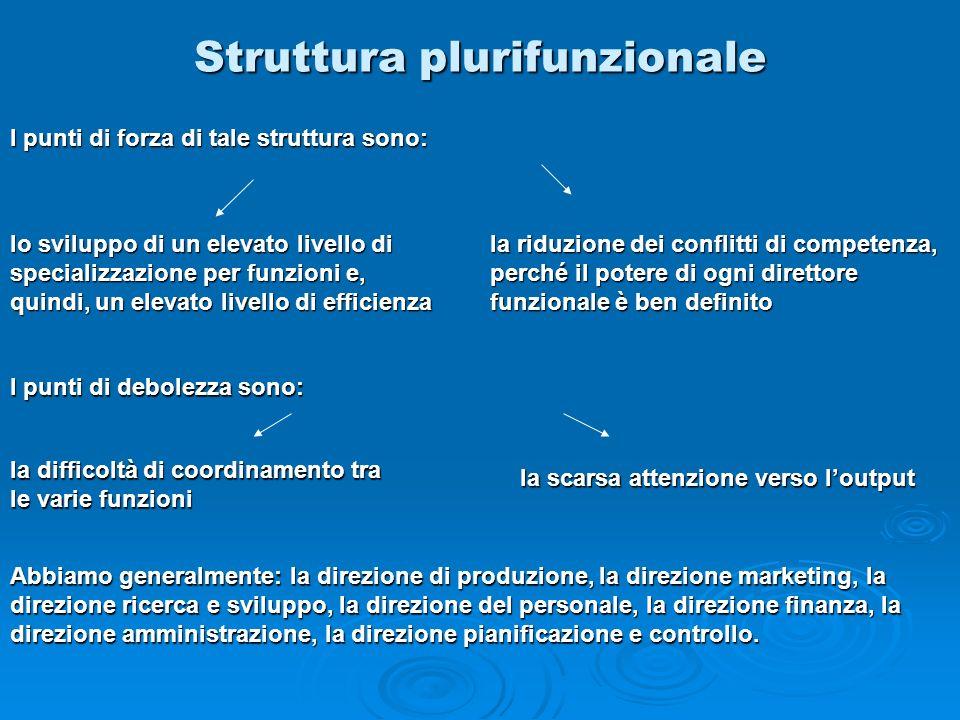 Struttura plurifunzionale Abbiamo generalmente: la direzione di produzione, la direzione marketing, la direzione ricerca e sviluppo, la direzione del