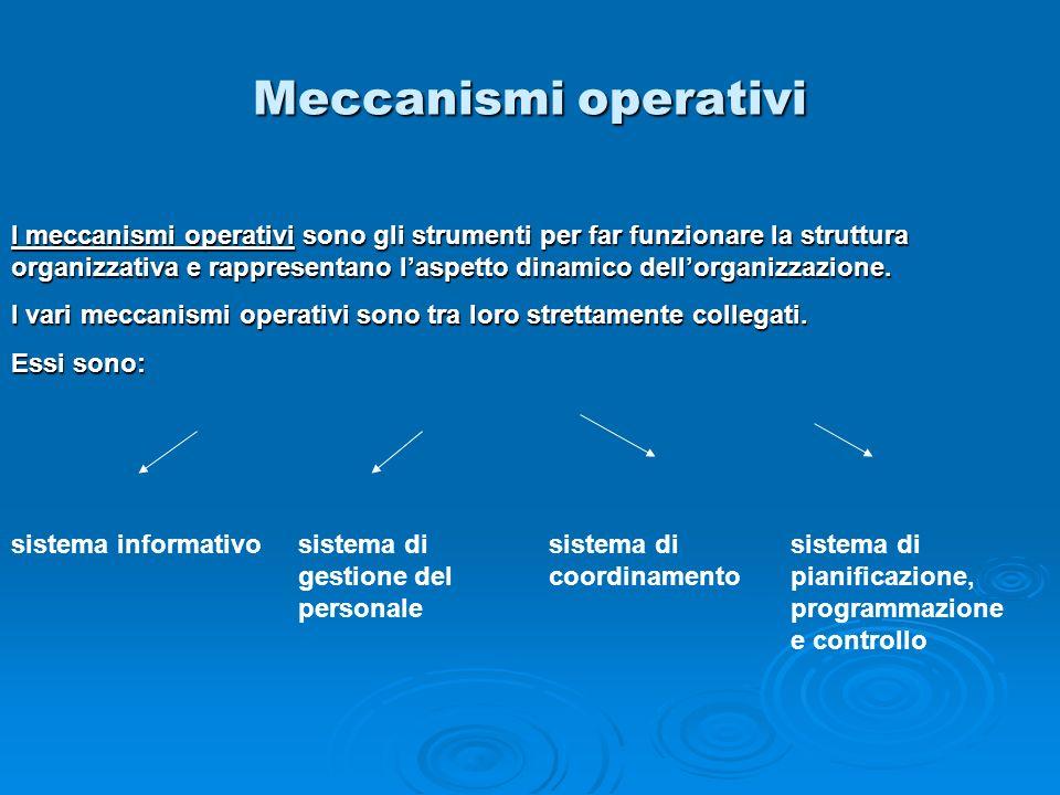 Meccanismi operativi sistema informativosistema di gestione del personale sistema di coordinamento sistema di pianificazione, programmazione e control