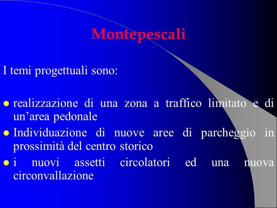 I temi progettuali sono: l realizzazione di una zona a traffico limitato e di unarea pedonale l Individuazione di nuove aree di parcheggio in prossimi