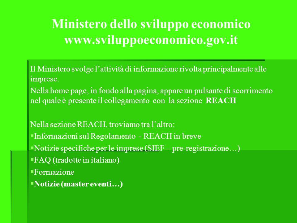 Ministero dello sviluppo economico www.sviluppoeconomico.gov.it Il Ministero svolge lattività di informazione rivolta principalmente alle imprese.