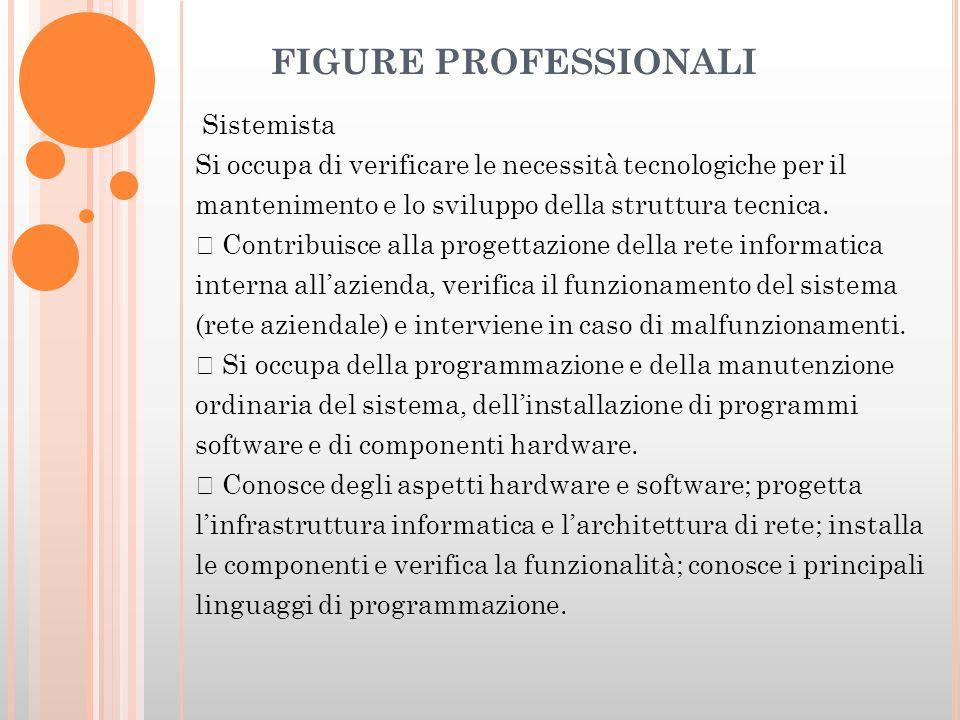 FIGURE PROFESSIONALI Sistemista Si occupa di verificare le necessità tecnologiche per il mantenimento e lo sviluppo della struttura tecnica.