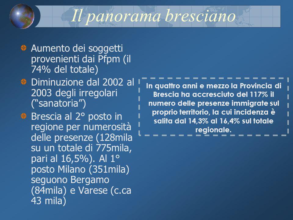 Il panorama bresciano Aumento dei soggetti provenienti dai Pfpm (il 74% del totale) Diminuzione dal 2002 al 2003 degli irregolari (sanatoria) Brescia al 2° posto in regione per numerosità delle presenze (128mila su un totale di 775mila, pari al 16,5%).