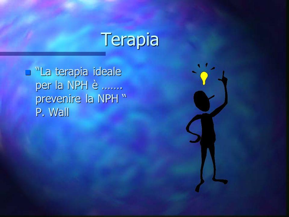 Terapia n La terapia ideale per la NPH è ……. prevenire la NPH P. Wall