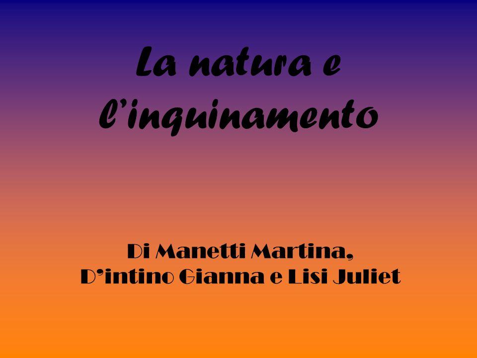 La natura e linquinamento Di Manetti Martina, Dintino Gianna e Lisi Juliet