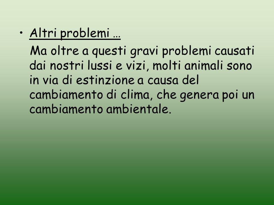Altri problemi … Ma oltre a questi gravi problemi causati dai nostri lussi e vizi, molti animali sono in via di estinzione a causa del cambiamento di
