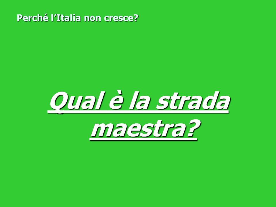 Qual è la strada maestra? Perché lItalia non cresce?