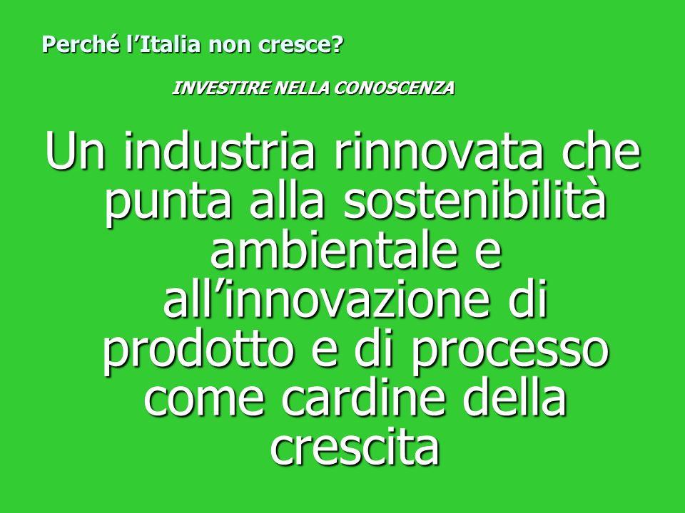 Un industria rinnovata che punta alla sostenibilità ambientale e allinnovazione di prodotto e di processo come cardine della crescita Perché lItalia n