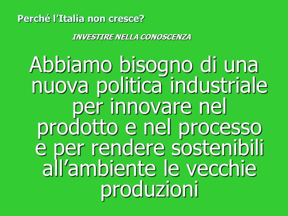 Abbiamo bisogno di una nuova politica industriale per innovare nel prodotto e nel processo e per rendere sostenibili allambiente le vecchie produzioni