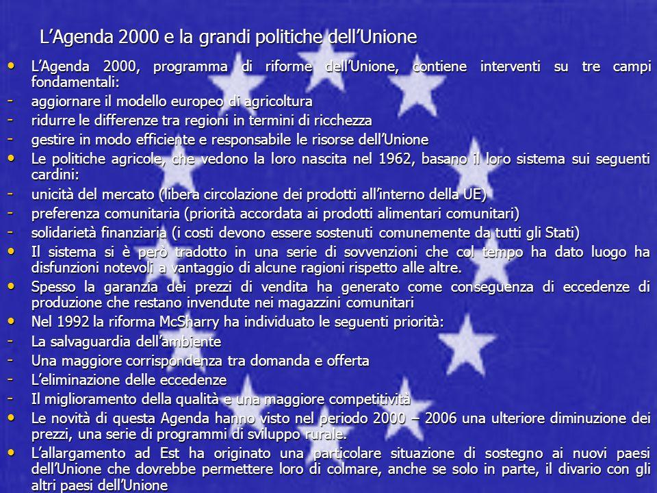 LAgenda 2000 e la grandi politiche dellUnione LAgenda 2000, programma di riforme dellUnione, contiene interventi su tre campi fondamentali: LAgenda 20