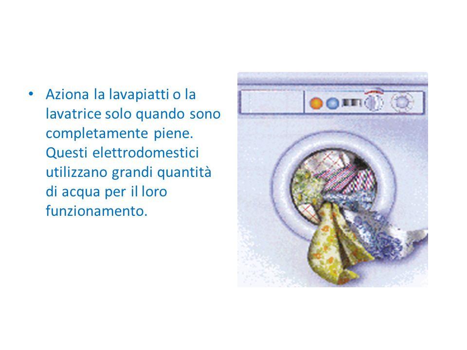 Aziona la lavapiatti o la lavatrice solo quando sono completamente piene. Questi elettrodomestici utilizzano grandi quantità di acqua per il loro funz