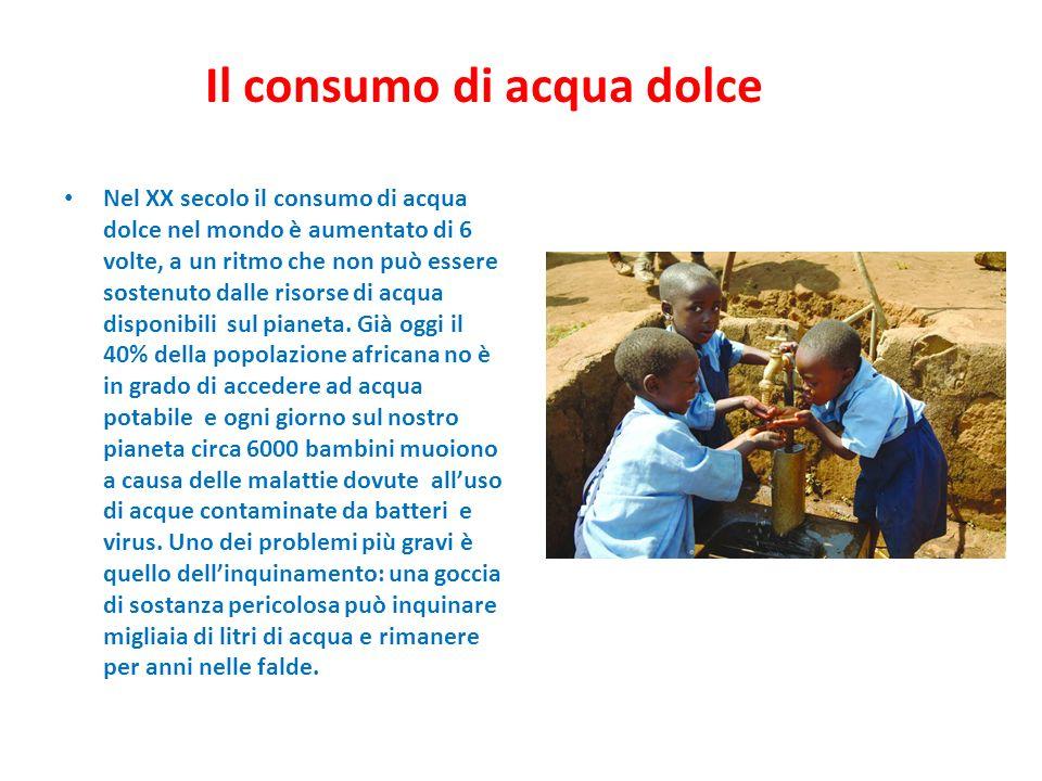 Il consumo di acqua dolce Nel XX secolo il consumo di acqua dolce nel mondo è aumentato di 6 volte, a un ritmo che non può essere sostenuto dalle riso