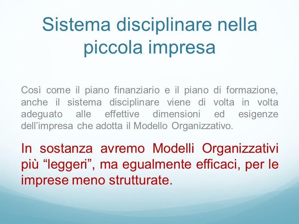 Sistema disciplinare nella piccola impresa Così come il piano finanziario e il piano di formazione, anche il sistema disciplinare viene di volta in volta adeguato alle effettive dimensioni ed esigenze dellimpresa che adotta il Modello Organizzativo.
