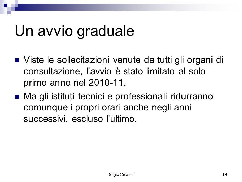 Sergio Cicatelli14 Un avvio graduale Viste le sollecitazioni venute da tutti gli organi di consultazione, lavvio è stato limitato al solo primo anno nel 2010-11.