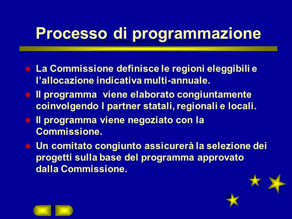 Processo di programmazione La Commissione definisce le regioni eleggibili e lallocazione indicativa multi-annuale.