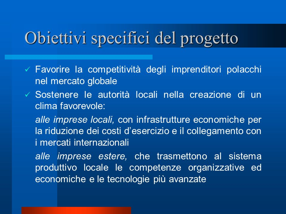 Obiettivi specifici del progetto Favorire la competitività degli imprenditori polacchi nel mercato globale Sostenere le autorità locali nella creazion