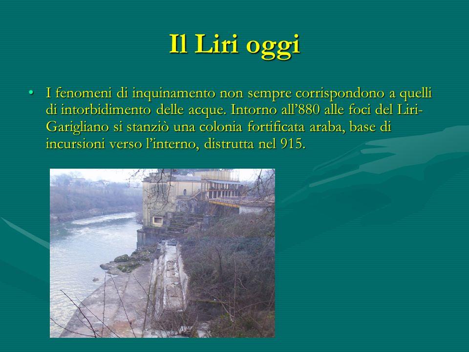 Il Liri oggi I fenomeni di inquinamento non sempre corrispondono a quelli di intorbidimento delle acque. Intorno all880 alle foci del Liri- Garigliano
