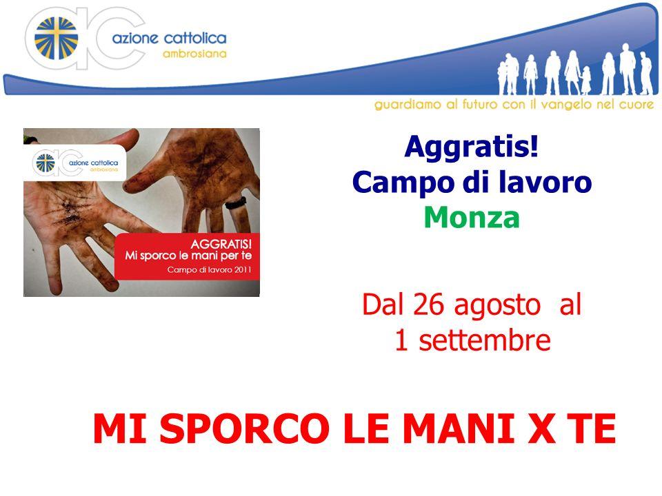 Aggratis! Campo di lavoro Monza MI SPORCO LE MANI X TE Dal 26 agosto al 1 settembre