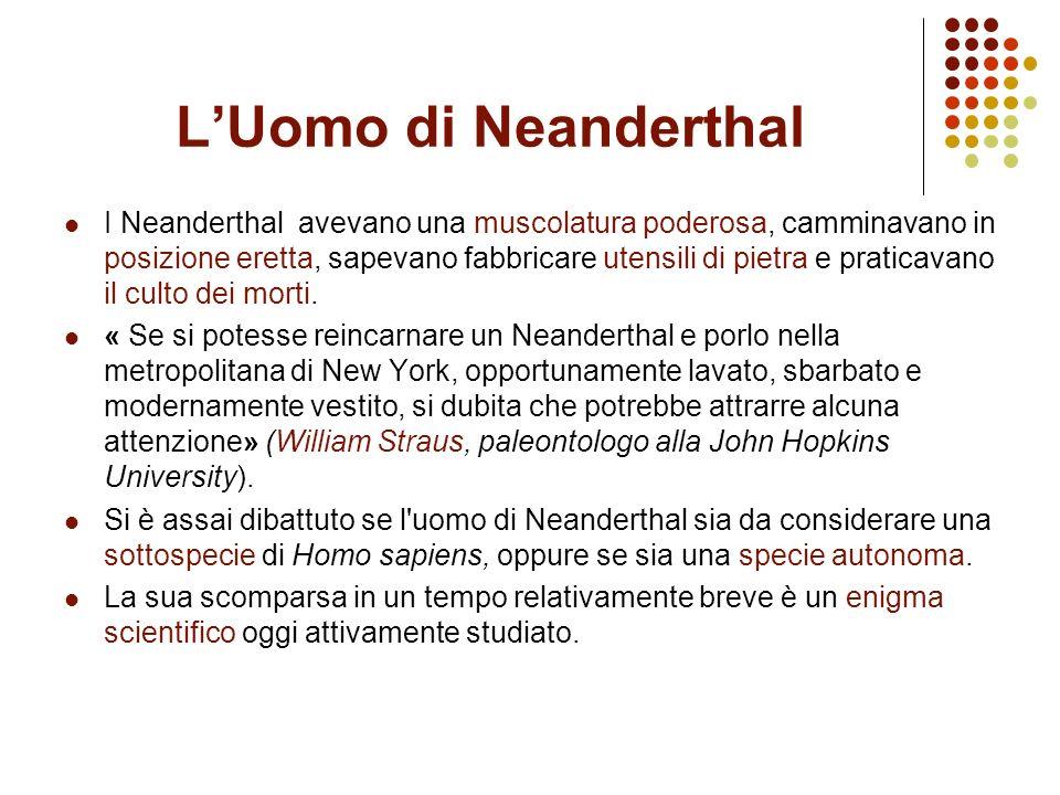 LUomo di Neanderthal I Neanderthal avevano una muscolatura poderosa, camminavano in posizione eretta, sapevano fabbricare utensili di pietra e pratica