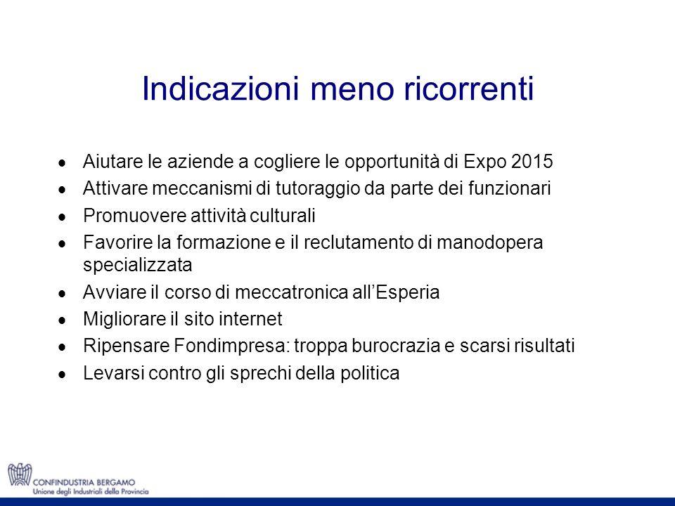 Indicazioni meno ricorrenti Aiutare le aziende a cogliere le opportunità di Expo 2015 Attivare meccanismi di tutoraggio da parte dei funzionari Promuo