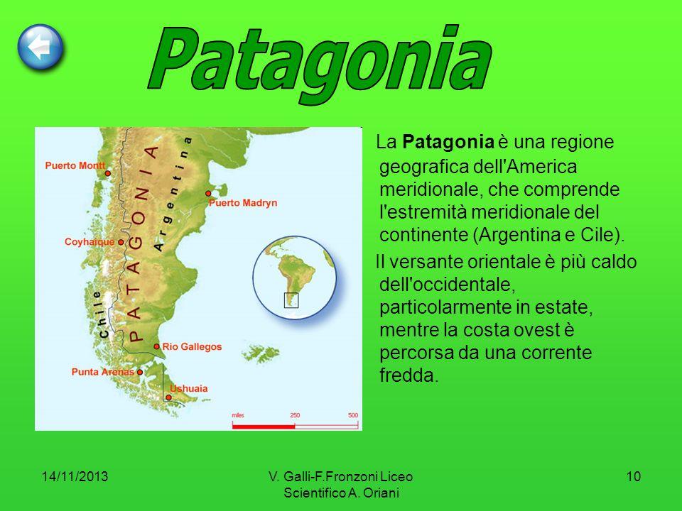 14/11/2013V. Galli-F.Fronzoni Liceo Scientifico A. Oriani 10 La Patagonia è una regione geografica dell'America meridionale, che comprende l'estremità