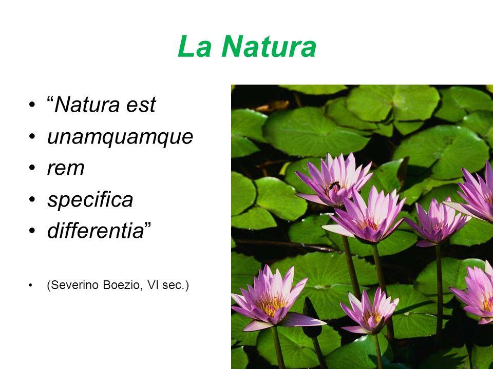 La Natura Natura est unamquamque rem specifica differentia (Severino Boezio, VI sec.)