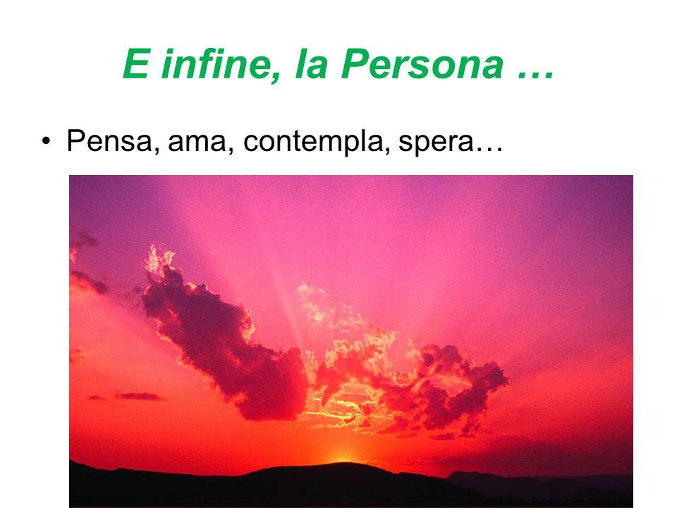 E infine, la Persona … Pensa, ama, contempla, spera…