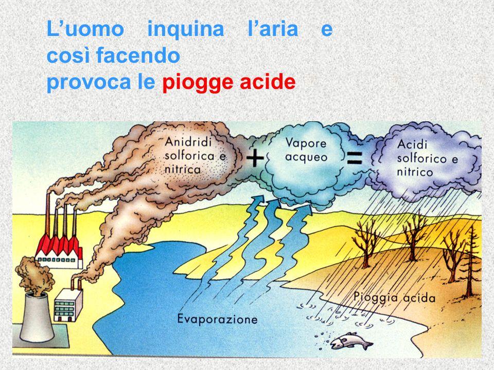Luomo inquina laria e così facendo provoca le piogge acide