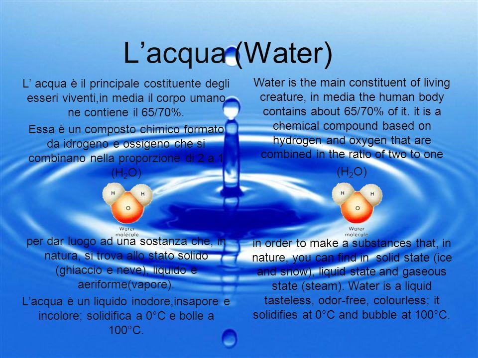 Lacqua (Water) L acqua è il principale costituente degli esseri viventi,in media il corpo umano ne contiene il 65/70%. Essa è un composto chimico form
