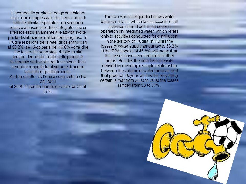 Lacquedotto pugliese redige due bilanci idrici: uno complessivo, che tiene conto di tutte le attività espletate e un secondo relativo allesercizio idr