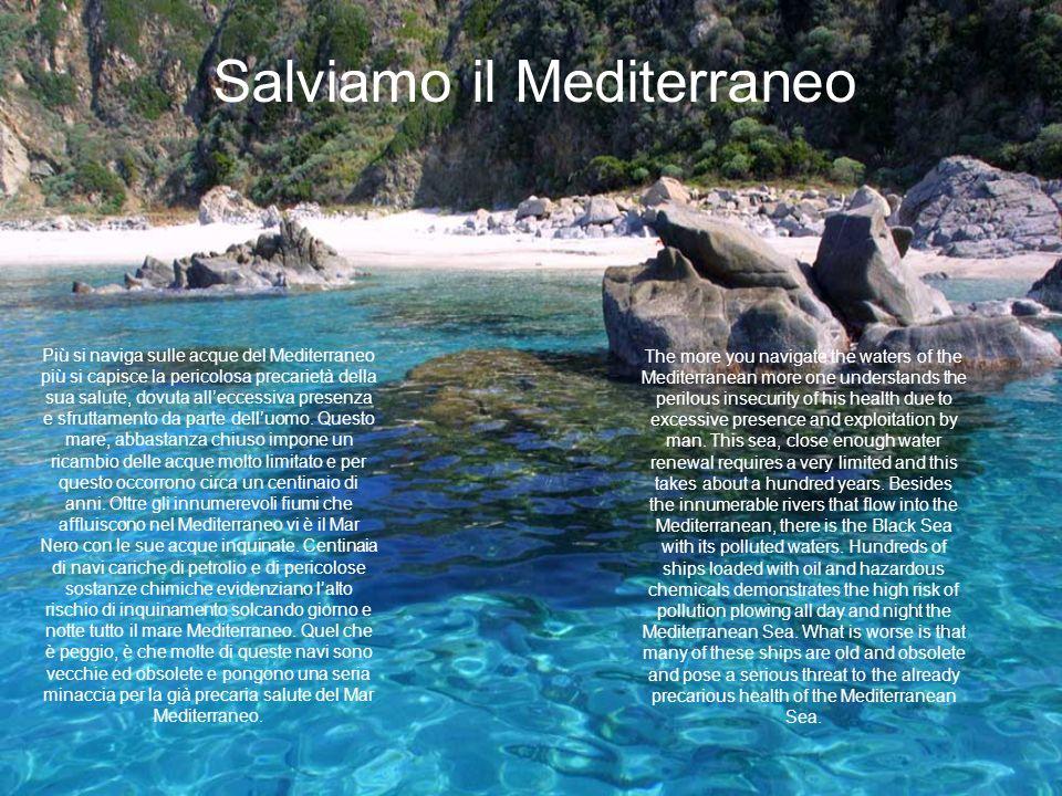 Più si naviga sulle acque del Mediterraneo più si capisce la pericolosa precarietà della sua salute, dovuta alleccessiva presenza e sfruttamento da pa