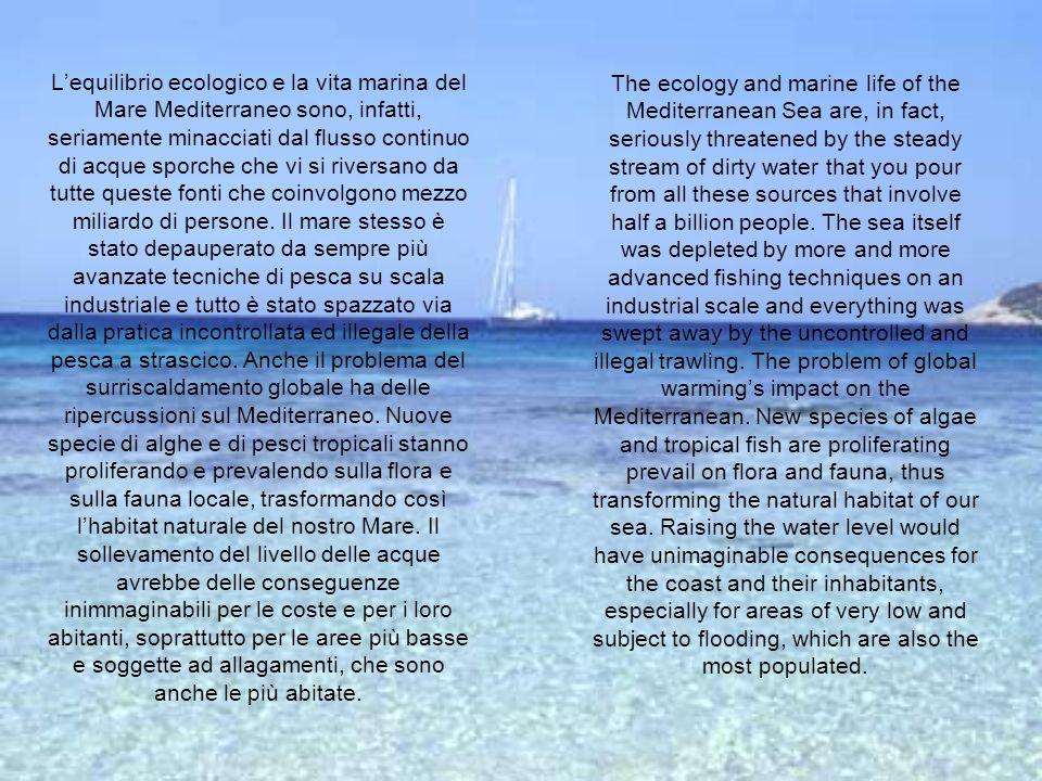 Lequilibrio ecologico e la vita marina del Mare Mediterraneo sono, infatti, seriamente minacciati dal flusso continuo di acque sporche che vi si river