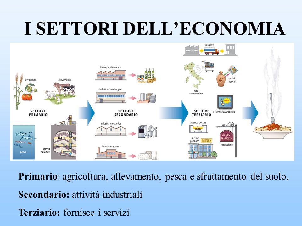 I SETTORI DELLECONOMIA Primario: agricoltura, allevamento, pesca e sfruttamento del suolo. Secondario: attività industriali Terziario: fornisce i serv