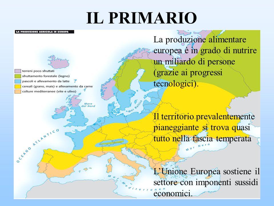 IL PRIMARIO La produzione alimentare europea è in grado di nutrire un miliardo di persone (grazie ai progressi tecnologici). Il territorio prevalentem