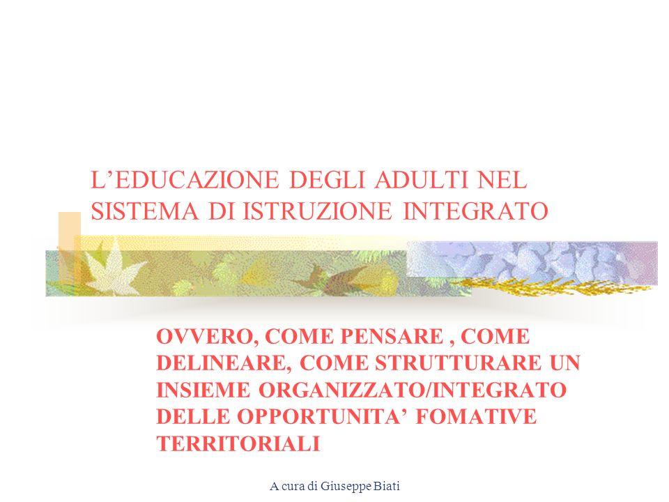 A cura di Giuseppe Biati LEDUCAZIONE DEGLI ADULTI NEL SISTEMA DI ISTRUZIONE INTEGRATO OVVERO, COME PENSARE, COME DELINEARE, COME STRUTTURARE UN INSIEME ORGANIZZATO/INTEGRATO DELLE OPPORTUNITA FOMATIVE TERRITORIALI
