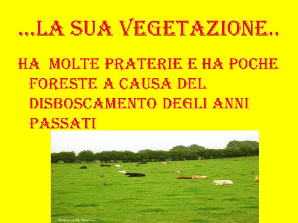 …La sua vegetazione.. Ha molte praterie e ha poche foreste a causa del disboscamento degli anni passati