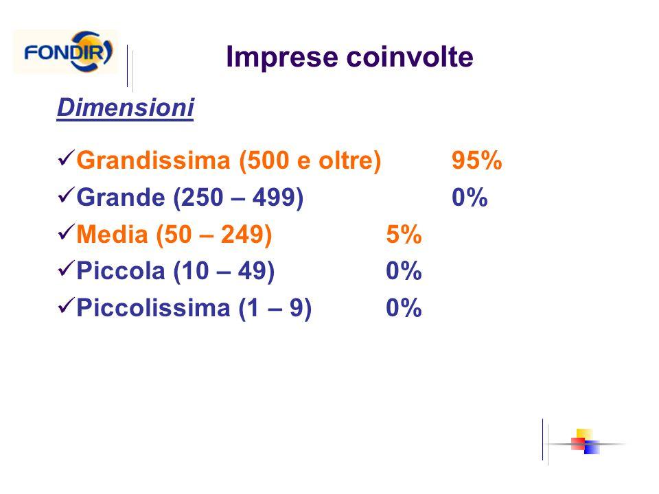 Imprese coinvolte Dimensioni Grandissima (500 e oltre) 95% Grande (250 – 499) 0% Media (50 – 249)5% Piccola (10 – 49)0% Piccolissima (1 – 9)0%