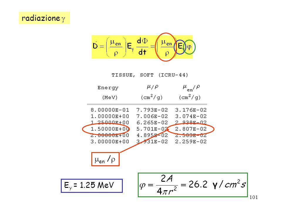101 E = 1.25 MeV en / radiazione