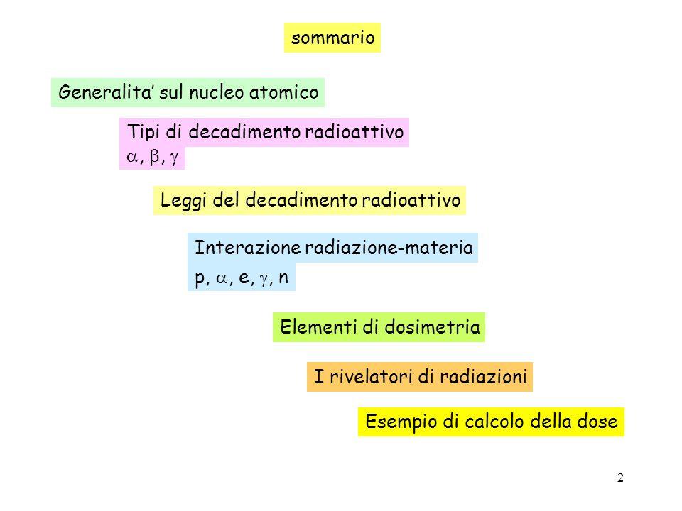 13 Leggi del decadimento radioattivo La radioattivita` si manifesta con la emissione di particelle oppure da parte del nucleo, spesso seguite da emissione tempo radiazioni misurate sorgente Cont.