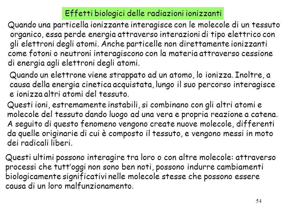 54 Quando una particella ionizzante interagisce con le molecole di un tessuto organico, essa perde energia attraverso interazioni di tipo elettrico co