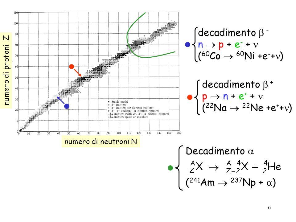 6 numero di neutroni N numero di protoni Z decadimento + p n + e + + ( 22 Na 22 Ne +e + + ) decadimento - n p + e - + ( 60 Co 60 Ni +e - + ) Decadimen