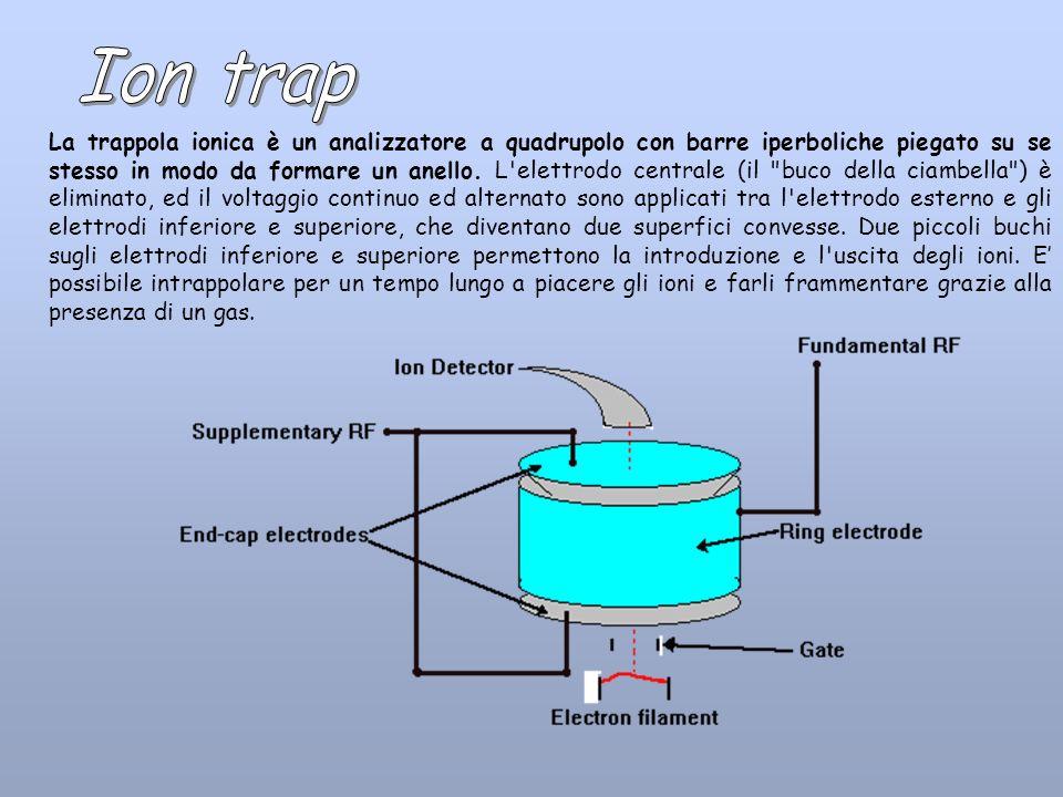 La trappola ionica è un analizzatore a quadrupolo con barre iperboliche piegato su se stesso in modo da formare un anello. L'elettrodo centrale (il