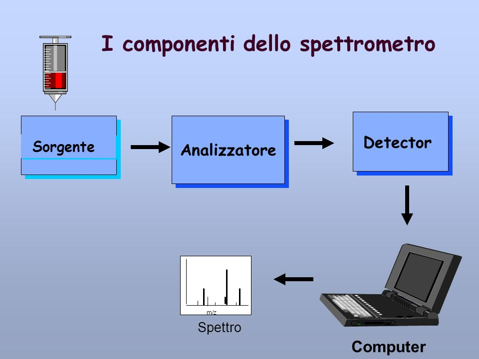 I componenti dello spettrometro Sorgente Analizzatore Detector Computer Spettro m/z
