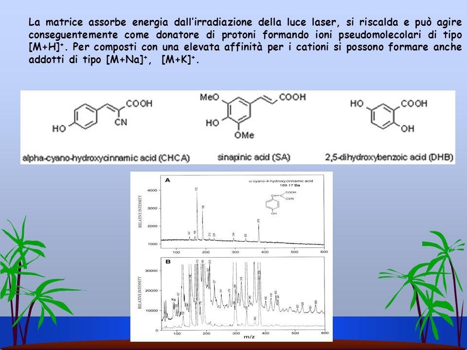 La matrice assorbe energia dallirradiazione della luce laser, si riscalda e può agire conseguentemente come donatore di protoni formando ioni pseudomo