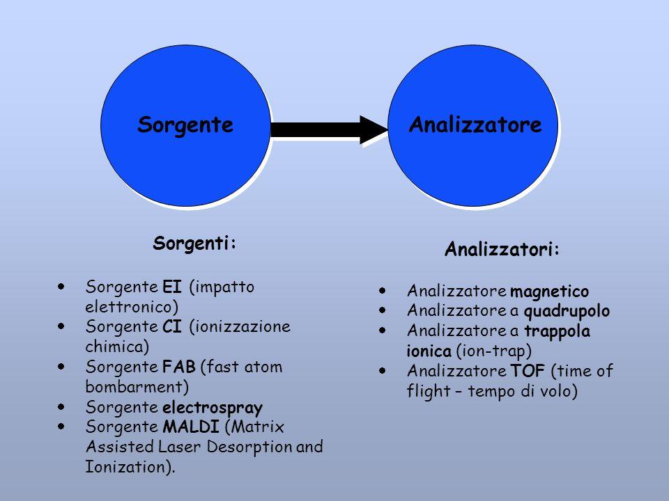Analizzatori: Analizzatore magnetico Analizzatore a quadrupolo Analizzatore a trappola ionica (ion-trap) Analizzatore TOF (time of flight – tempo di v