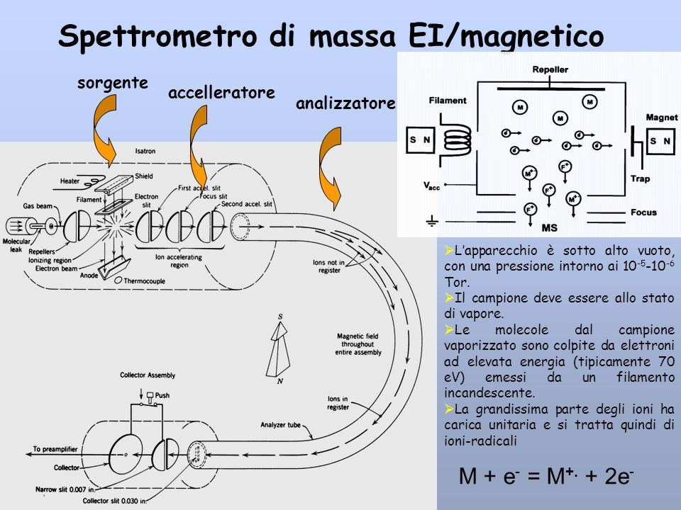 Spettrometro di massa EI/magnetico Lapparecchio è sotto alto vuoto, con una pressione intorno ai 10 -5 -10 -6 Tor. Il campione deve essere allo stato