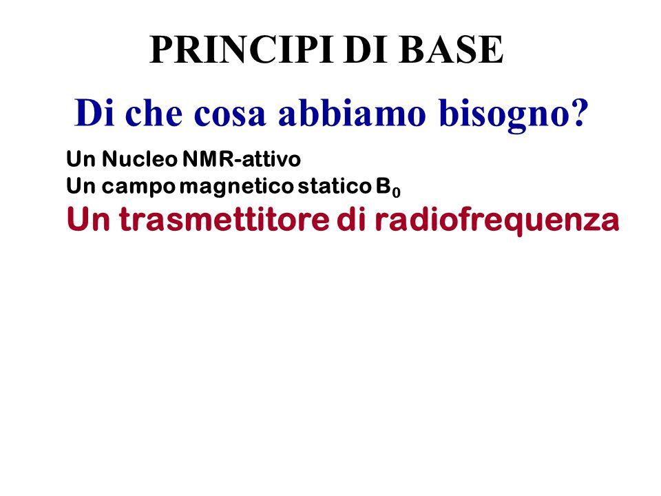 Di che cosa abbiamo bisogno? Un Nucleo NMR-attivo Un campo magnetico statico B 0 Un trasmettitore di radiofrequenza PRINCIPI DI BASE