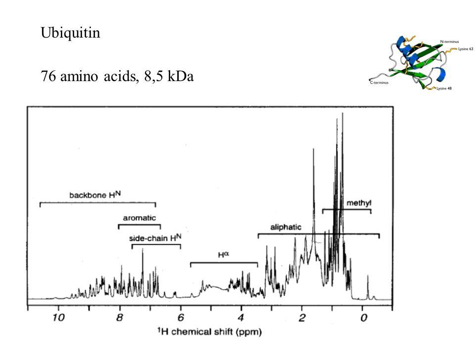 Ubiquitin 76 amino acids, 8,5 kDa