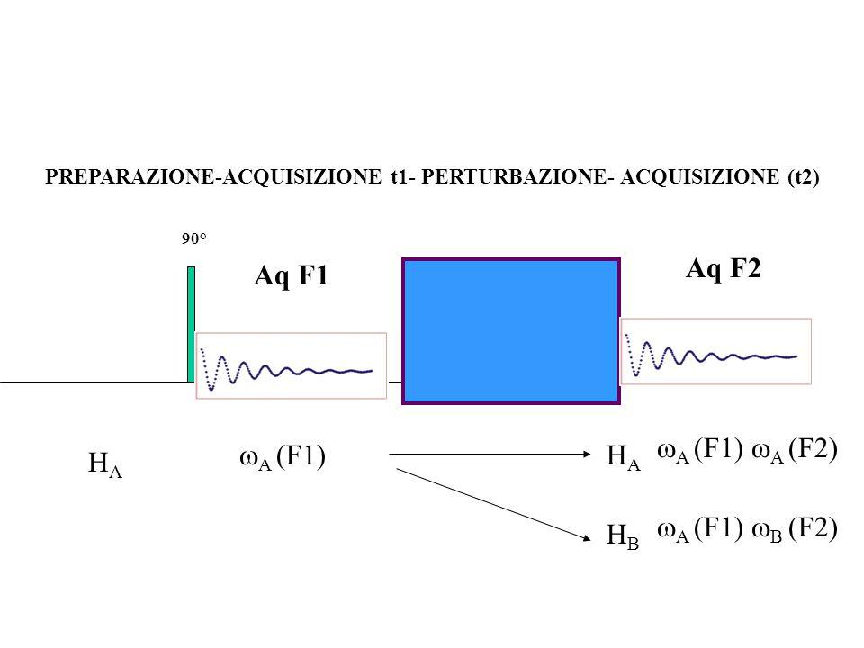PREPARAZIONE-ACQUISIZIONE t1- PERTURBAZIONE- ACQUISIZIONE (t2) 90° Aq F1 HAHA A (F1) HBHB Aq F2 A (F1) B (F2) HAHA A (F1) A (F2)