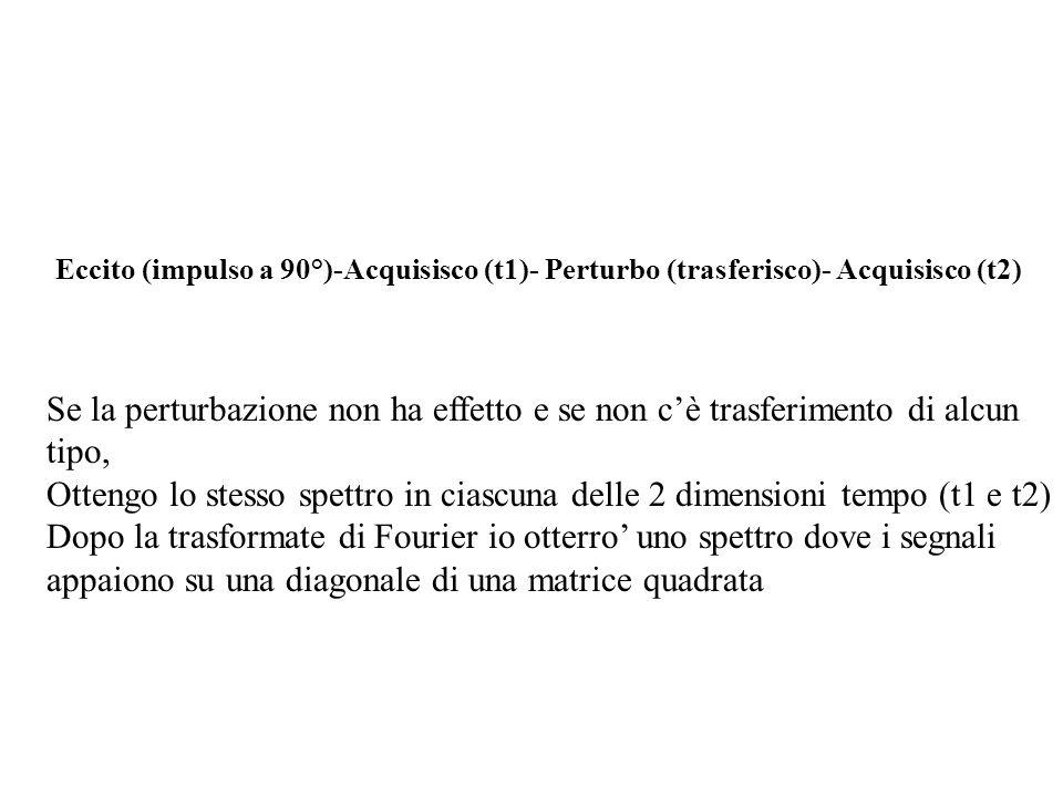 Eccito (impulso a 90°)-Acquisisco (t1)- Perturbo (trasferisco)- Acquisisco (t2) Se la perturbazione non ha effetto e se non cè trasferimento di alcun