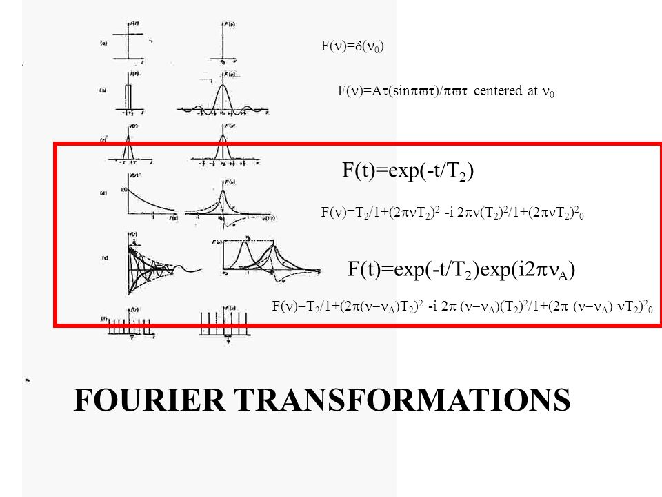 FOURIER TRANSFORMATIONS F( )= ( 0 ) F( )=A (sin )/ centered at 0 F( )=T 2 /1+(2 T 2 ) 2 -i 2 (T 2 ) 2 /1+(2 T 2 ) 2 0 F(t)=exp(-t/T 2 ) F(t)=exp(-t/T